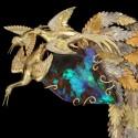 Брошь «Ascenso Celestial»