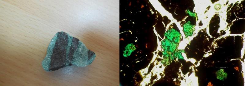 Кусок породы, добытый на раскопках. Мариинскит можно хорошо разглядеть лишь под микроскопом. Фото: Александр Шорин