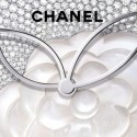 330 бриллиантов на циферблате часов Chanel Privé Décor Camélia Nacré
