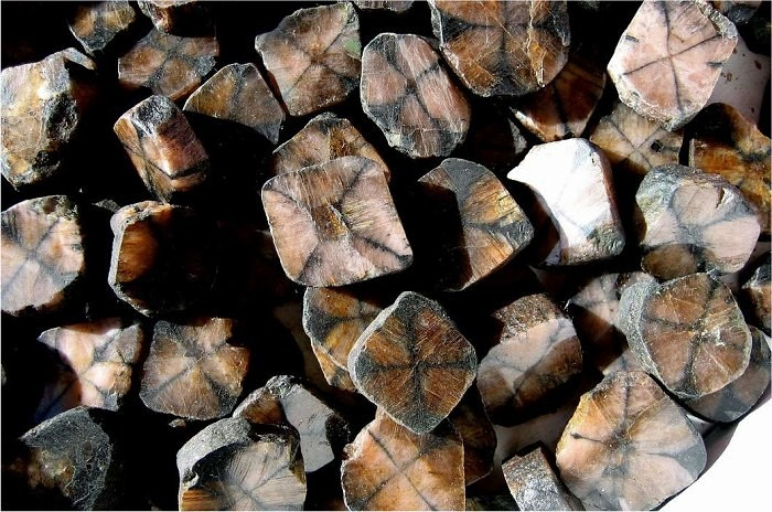 Необработанный хиастолит. Фото: geo.web.ru
