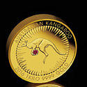 Монета Kimberley Treasure продана за миллион долларов