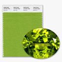 Pantone объявили цвет 2017 года — Greenery