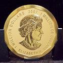 Украдена 100-килограммовая золотая монета Big Maple Leaf